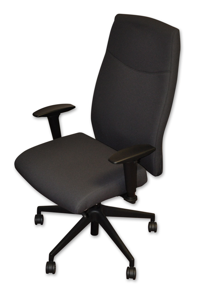 Executive Ergonomic Chair in Black